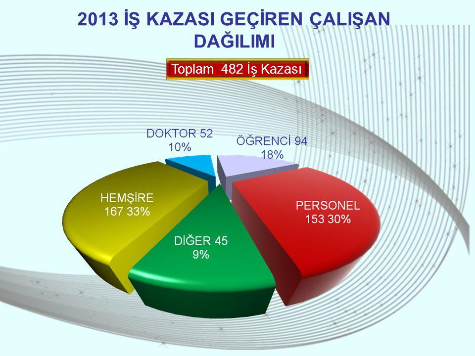 2013 İŞ KAZASI GEÇİREN ÇALIŞAN DAĞILIMI Toplam 482 İş Kazası
