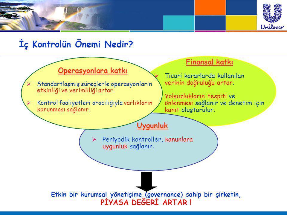İç Kontrol Paradigmaları ve Gerçekler Paradigma 1 : İç kontrol, yazılı politika ve prosedürler ile başlar.