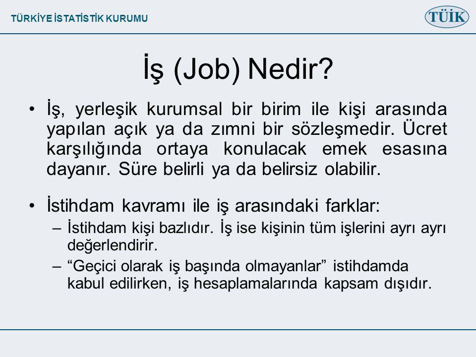 TÜRKİYE İSTATİSTİK KURUMU İş (Job) Nedir.