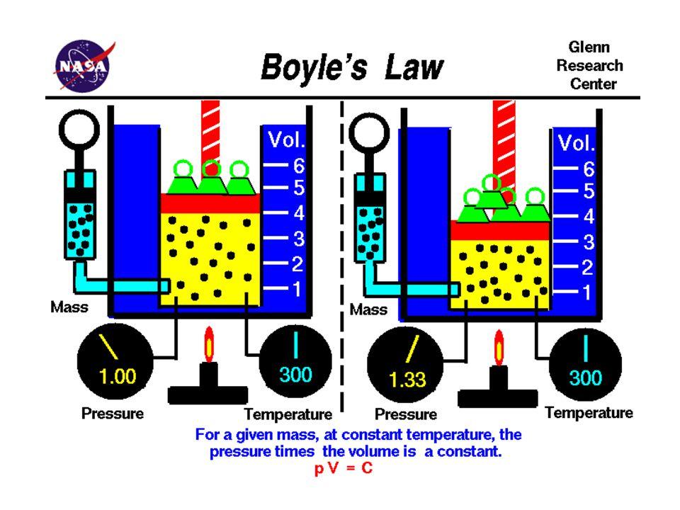 Solunum sistemi öncelikle kandolaşımı ve ortam arasındaki oksijen ve karbondioksit değişimi ile ilgilenir.