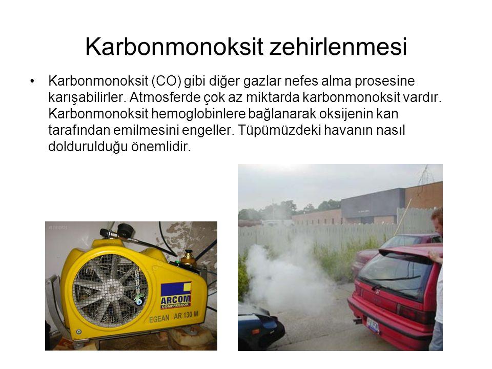 Karbonmonoksit zehirlenmesi Karbonmonoksit (CO) gibi diğer gazlar nefes alma prosesine karışabilirler. Atmosferde çok az miktarda karbonmonoksit vardı