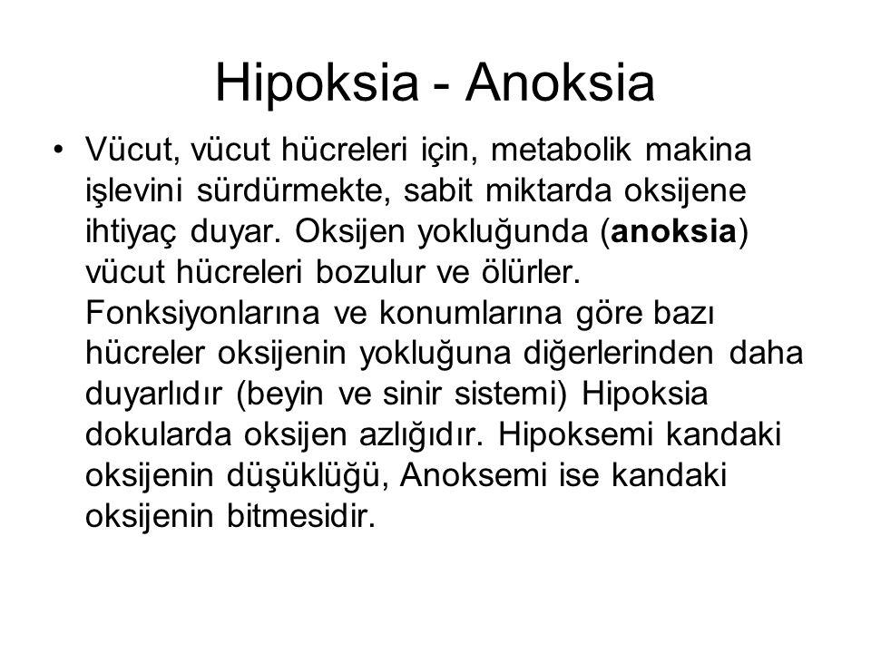 Hipoksia - Anoksia Vücut, vücut hücreleri için, metabolik makina işlevini sürdürmekte, sabit miktarda oksijene ihtiyaç duyar. Oksijen yokluğunda (anok