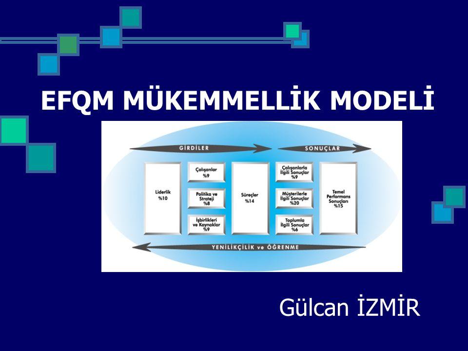 MODELİN İÇERİĞİ ve YAPISI - 3 Model'deki dokuz ana kriter; kuruluşun mükemmelliğe erişme yolunda gösterdiği çabalara ilişkin değerlendirmeleri içermektedir.