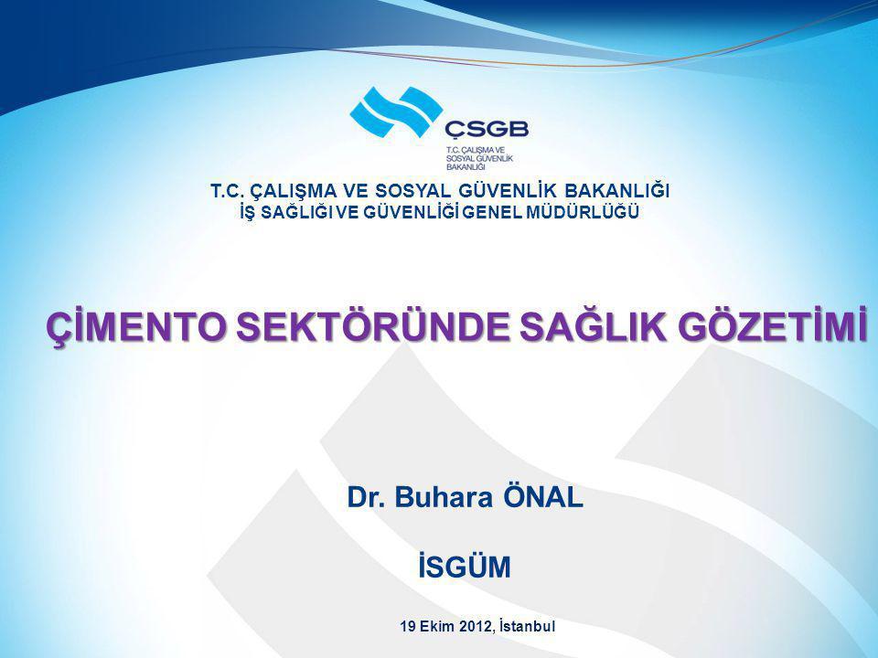  İSG Hizmetleri  Çimento sektöründe çalışma ortamı gözetimi  Çimento sektöründe sağlık gözetimi  Çimento sektöründe yürütülen İSG çalışmaları www.csgb.gov.tr2