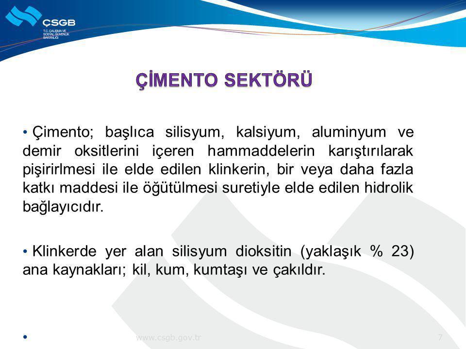 ÇEİS ile İSGÜM arasında imzalanan bir protokol ile Türkiye'deki 44 çimento fabrikasında, çalışma ortamına toz yayılan bölümler incelenerek toz düzeyleri ölçülmüştür.