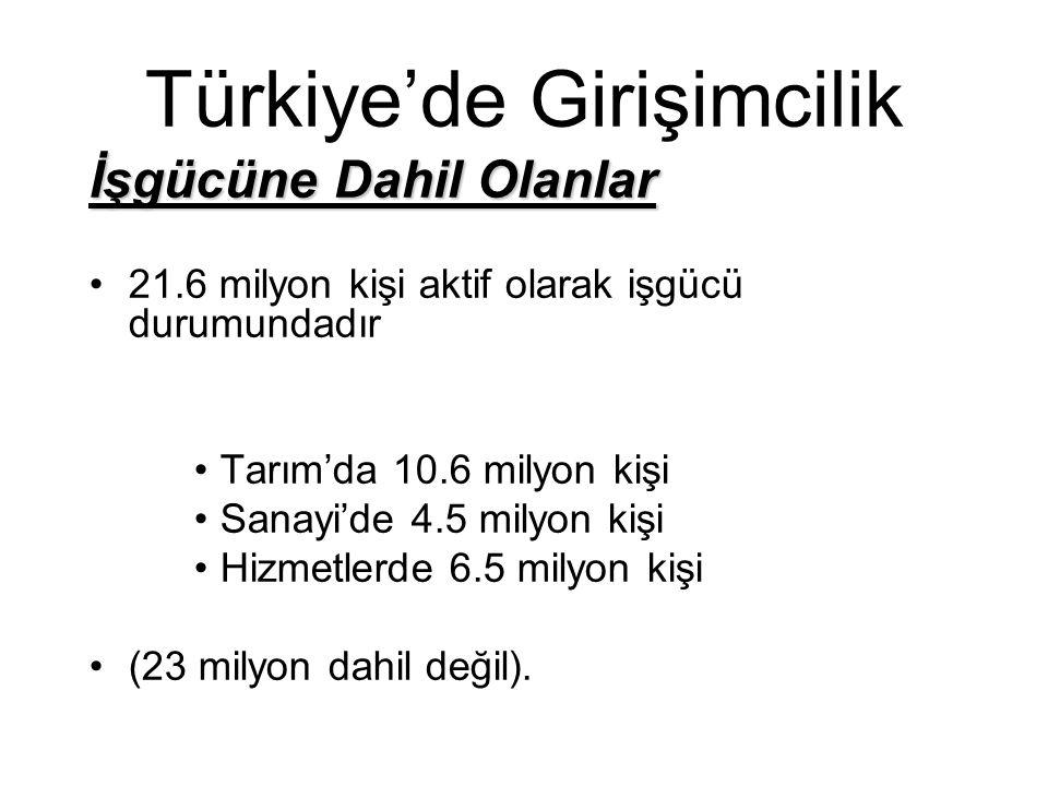 Türkiye'de Girişimcilik İşgücüne Dahil Olanlar 21.6 milyon kişi aktif olarak işgücü durumundadır Tarım'da 10.6 milyon kişi Sanayi'de 4.5 milyon kişi H