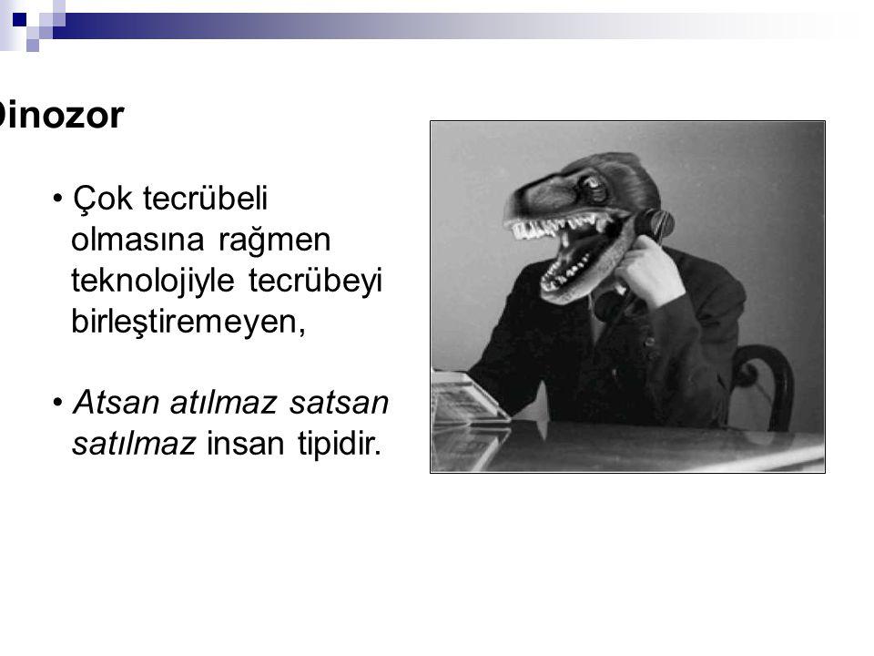 Dinozor Çok tecrübeli olmasına rağmen teknolojiyle tecrübeyi birleştiremeyen, Atsan atılmaz satsan satılmaz insan tipidir.