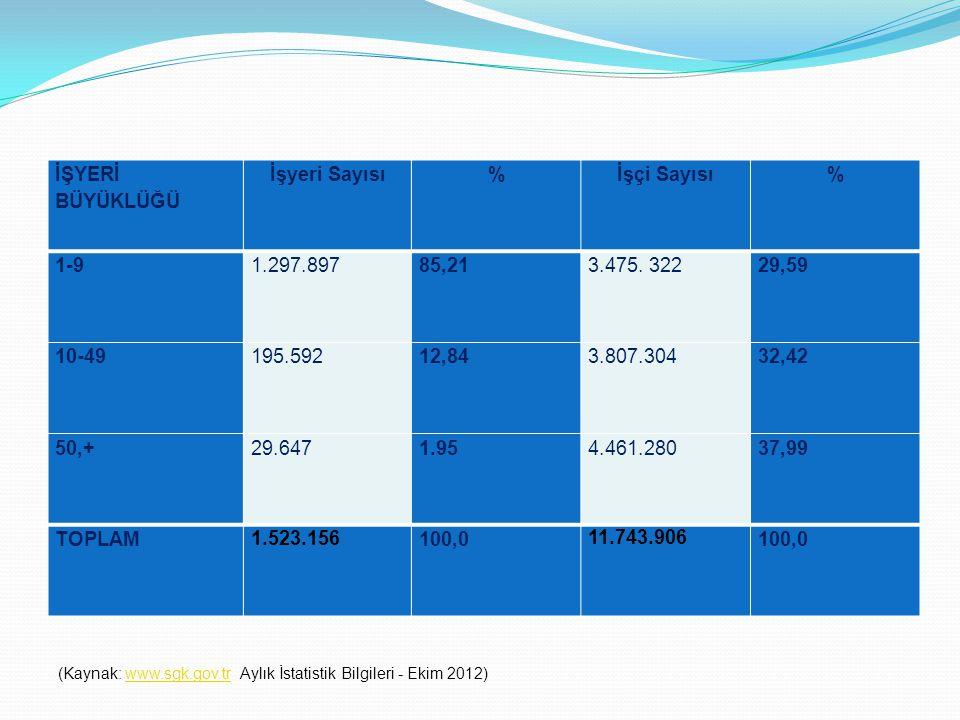 İŞYERİ BÜYÜKLÜĞÜ İşyeri Sayısı%İşçi Sayısı% 1-9 1.297.89785,213.475. 32229,59 10-49 195.59212,843.807.30432,42 50,+ 29.6471.95 4.461.280 37,99 TOPLAM