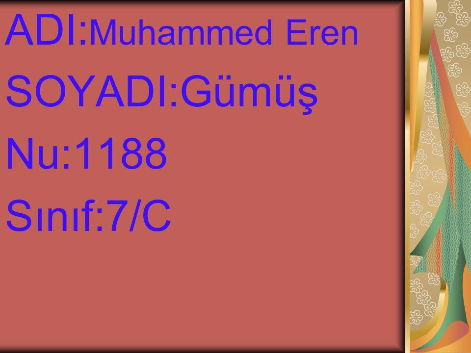 ADI: Muhammed Eren SOYADI:Gümüş Nu:1188 Sınıf:7/C