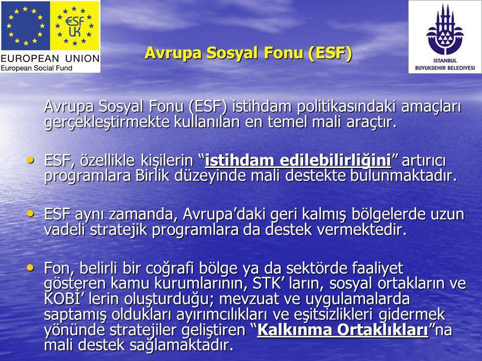 Avrupa Sosyal Fonu (ESF) Avrupa Sosyal Fonu (ESF) istihdam politikasındaki amaçları gerçekleştirmekte kullanılan en temel mali araçtır. ESF, özellikle