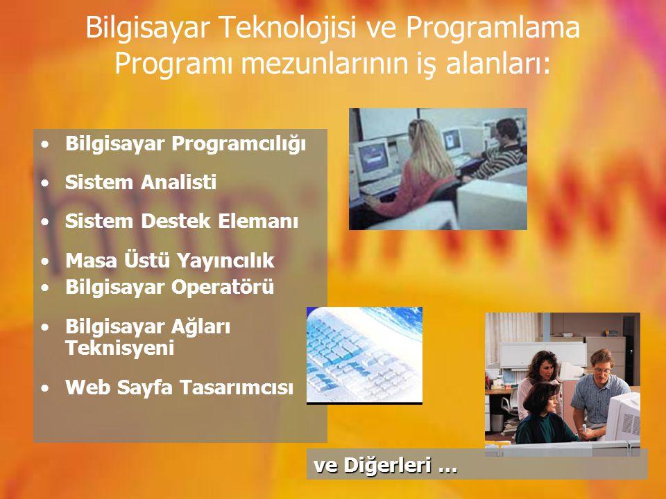 Bilgisayar Teknolojisi ve Programlama Programı mezunlarının iş alanları: Bilgisayar Programcılığı Sistem Analisti Sistem Destek Elemanı Masa Üstü Yayı