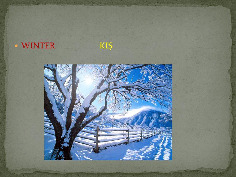 WINTER KIŞ