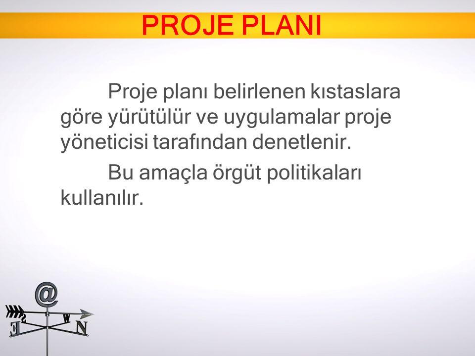 Proje planı belirlenen kıstaslara göre yürütülür ve uygulamalar proje yöneticisi tarafından denetlenir. Bu amaçla örgüt politikaları kullanılır.