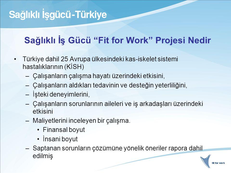 Sağlıklı İş Gücü Fit for Work Projesi Nedir Türkiye dahil 25 Avrupa ülkesindeki kas-iskelet sistemi hastalıklarının (KİSH) –Çalışanların çalışma hayatı üzerindeki etkisini, –Çalışanların aldıkları tedavinin ve desteğin yeterliliğini, –İşteki deneyimlerini, –Çalışanların sorunlarının aileleri ve iş arkadaşları üzerindeki etkisini –Maliyetlerini inceleyen bir çalışma.