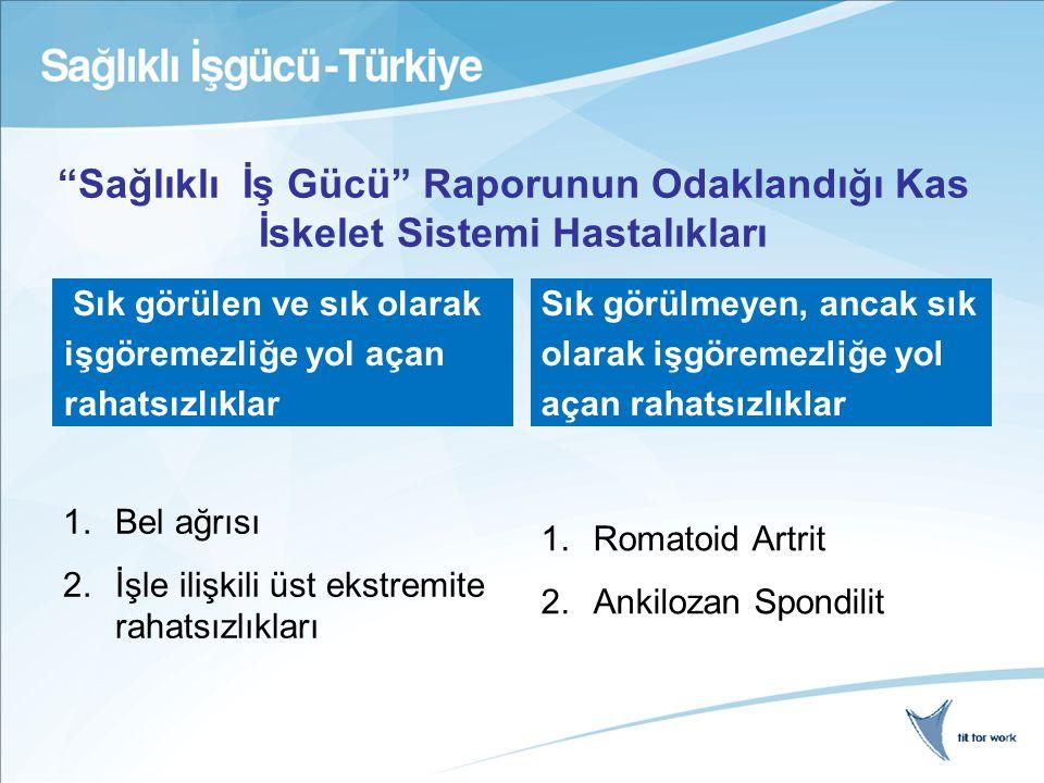 Yöntem Çok ayrıntılı bir litertatür araştırması; yayınlanmış ve yayınlanmamış araştırmaların gözden geçirilmesi Farklı ülkelerdeki prevalans ve maliyet verilerinin, klinik ve iş hayatı ile ilgili çalışmaların karşılaştırılarak gözden geçirilmesi Ekonomistlerle, iş hayatı ile ilgili uzmanlarla, klinisyenlerle, hasta gruplarıyla ve politika oluşturanlarla görüşmeler Econometrik veri analizi Türkiye dahil 25 Avrupa ülkesinde rapor yazımı