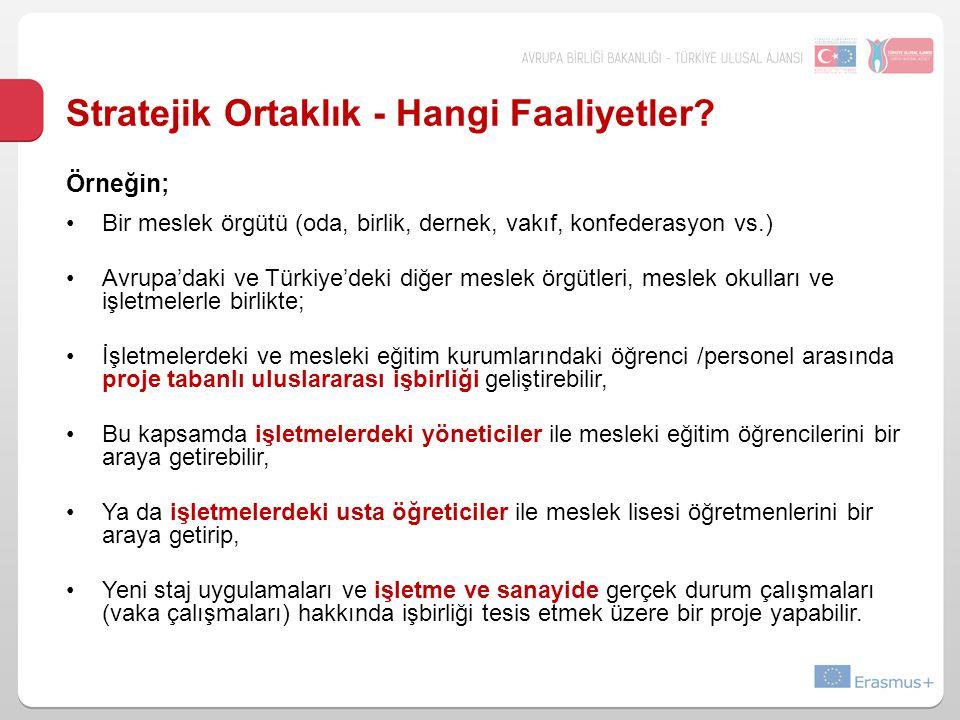 Stratejik Ortaklık - Hangi Faaliyetler? Örneğin; Bir meslek örgütü (oda, birlik, dernek, vakıf, konfederasyon vs.) Avrupa'daki ve Türkiye'deki diğer m