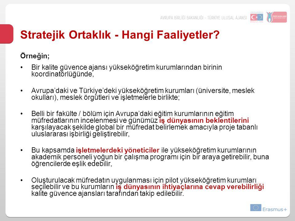 Stratejik Ortaklık - Hangi Faaliyetler? Örneğin; Bir kalite güvence ajansı yükseköğretim kurumlarından birinin koordinatörlüğünde, Avrupa'daki ve Türk