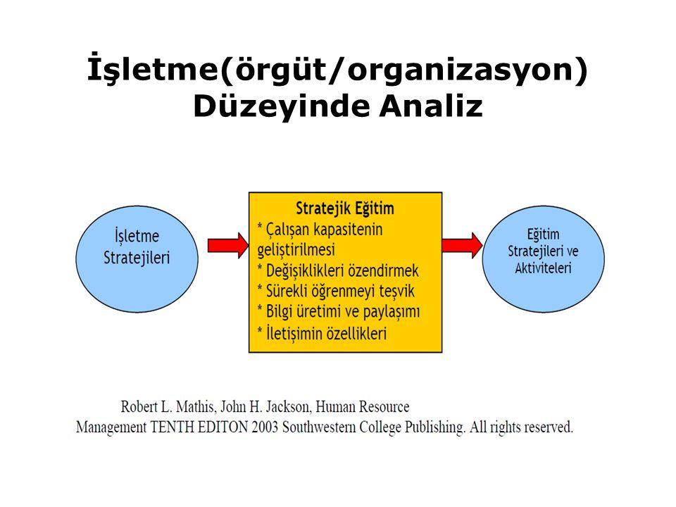 İşletme(örgüt/organizasyon) Düzeyinde Analiz