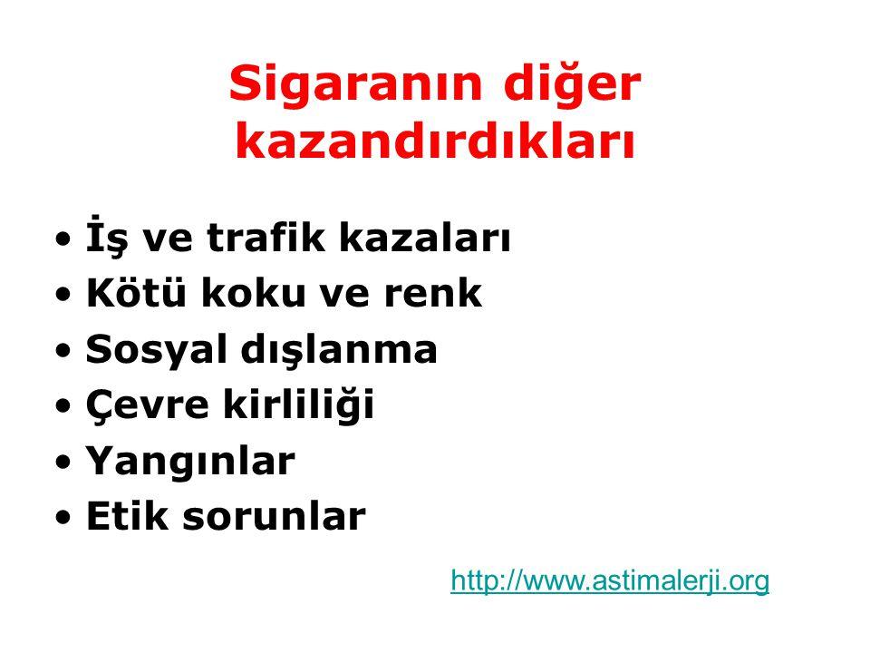Sigaranın diğer kazandırdıkları İş ve trafik kazaları Kötü koku ve renk Sosyal dışlanma Çevre kirliliği Yangınlar Etik sorunlar http://www.astimalerji.org