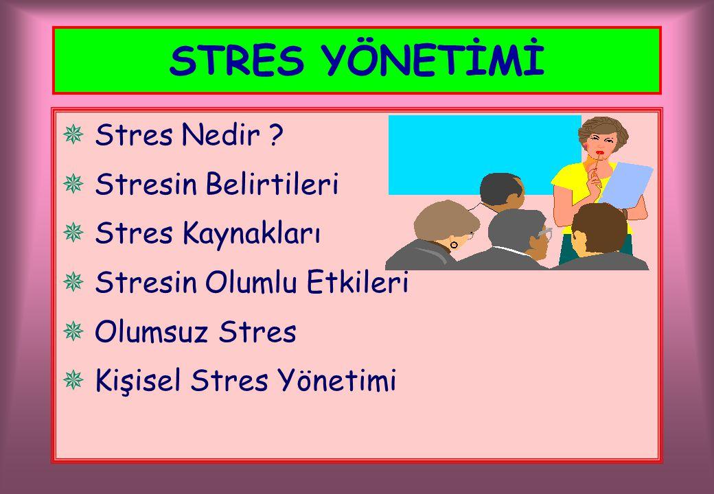  Stres Nedir ?  Stresin Belirtileri  Stres Kaynakları  Stresin Olumlu Etkileri  Olumsuz Stres  Kişisel Stres Yönetimi STRES YÖNETİMİ