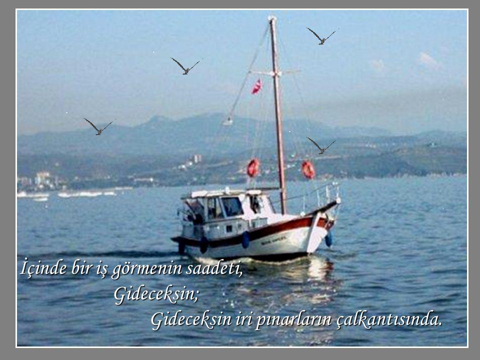 Gün doğmadan, Deniz daha bembeyazken çıkacaksın yola. Kürekleri tutmanın şehveti avuçlarında,