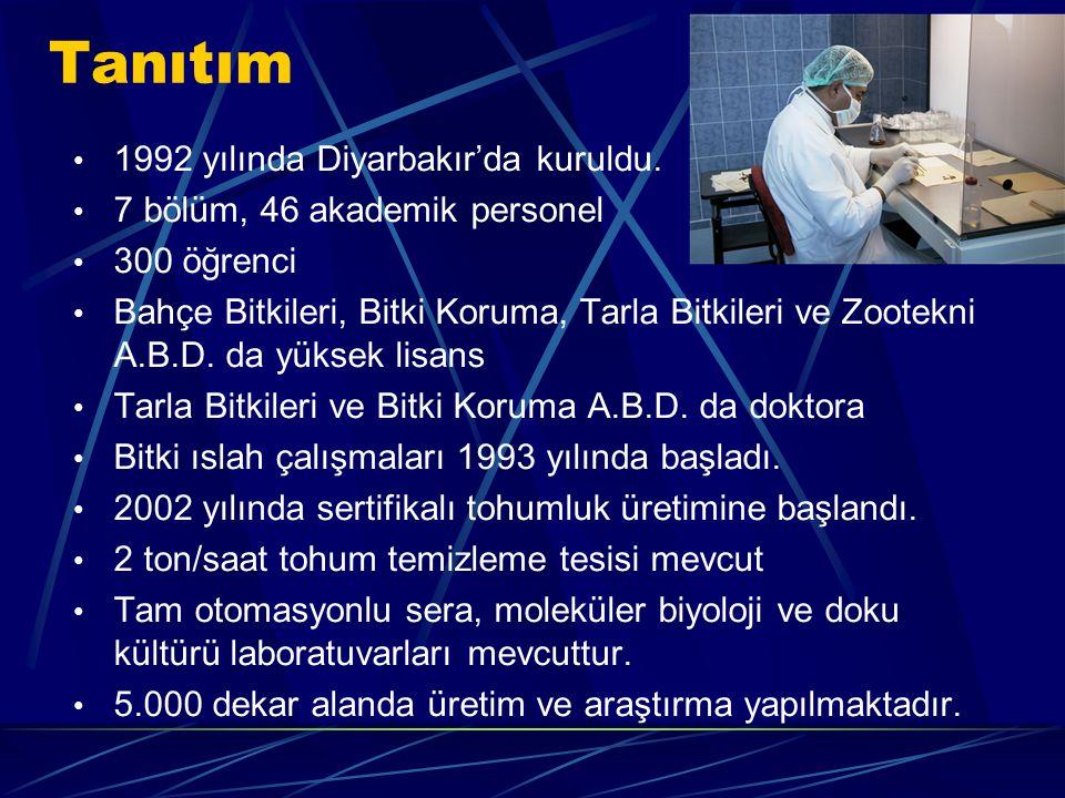 1992 yılında Diyarbakır'da kuruldu.