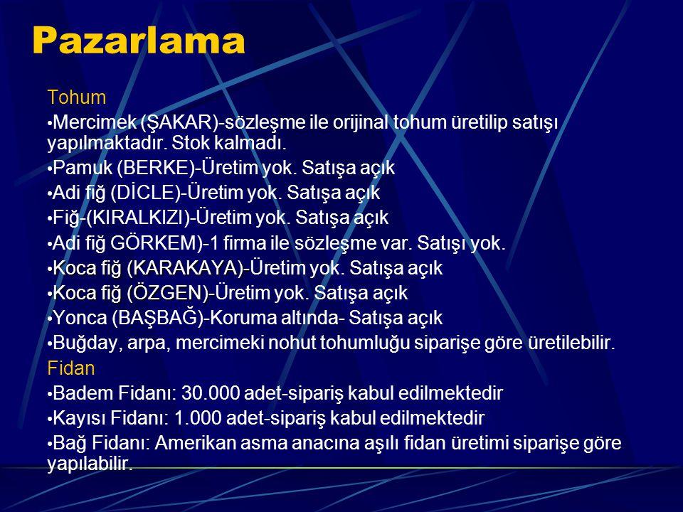 Tohum Mercimek (ŞAKAR)-sözleşme ile orijinal tohum üretilip satışı yapılmaktadır.