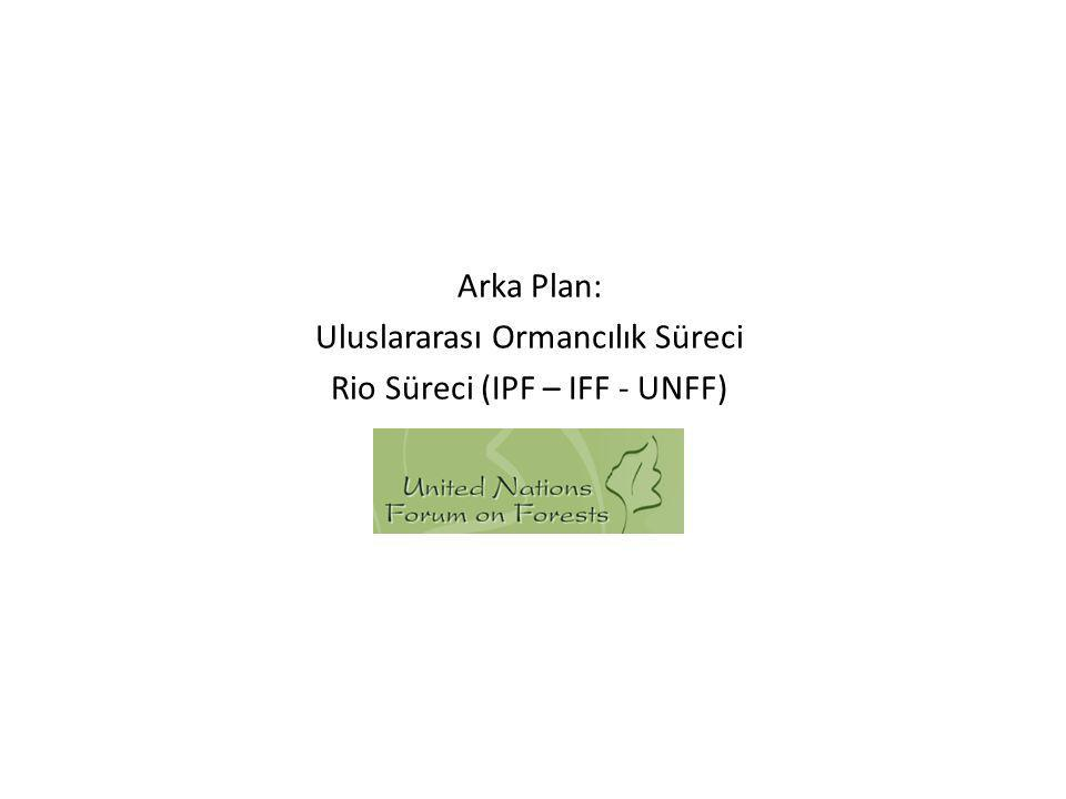 Arka Plan: Uluslararası Ormancılık Süreci Rio Süreci (IPF – IFF - UNFF)