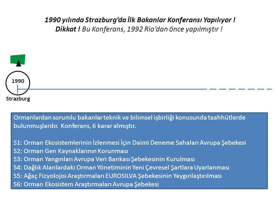 1990 yılında Strazburg'da İlk Bakanlar Konferansı Yapılıyor ! Dikkat ! Bu Konferans, 1992 Rio'dan önce yapılmıştır ! 1990 Strazburg Ormanlardan soruml
