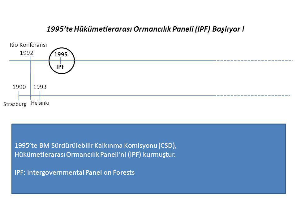 1995'te Hükümetlerarası Ormancılık Paneli (IPF) Başlıyor ! Rio Konferansı 1992 1995 IPF 19931990 Strazburg Helsinki 1995'te BM Sürdürülebilir Kalkınma