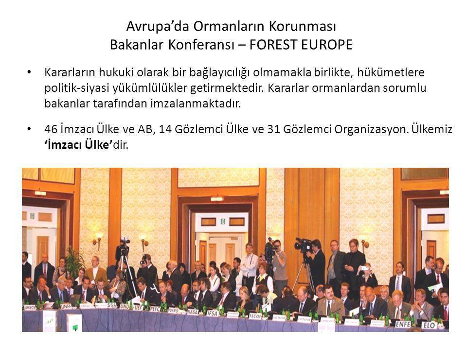 2009 yılında UNFF8'de Finansman üzerine yapılan çetin müzakereler .