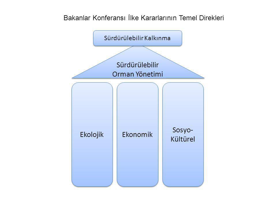 Teşekkür ederim. Serdar Yegül serdaryegul@ogm.gov.tr 296 40 00 dahili 2260 Güncelleme: Temmuz 2010