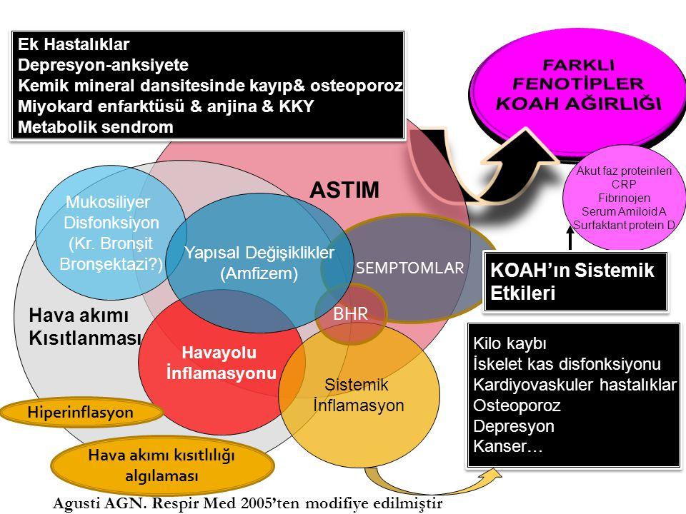 KOAH alevlenmelerinde dört farklı biyolojik küme (cluster): 1)Bakteri egemen (balgam IL-1β), 2) Virüs egemen (serum CXCL-10), 3) Eozinofil egemen (kanda eozinofili), 4) Düşük yangısal yanıtlı (pauci-inflammatory) AJRCCM 2011;184:662