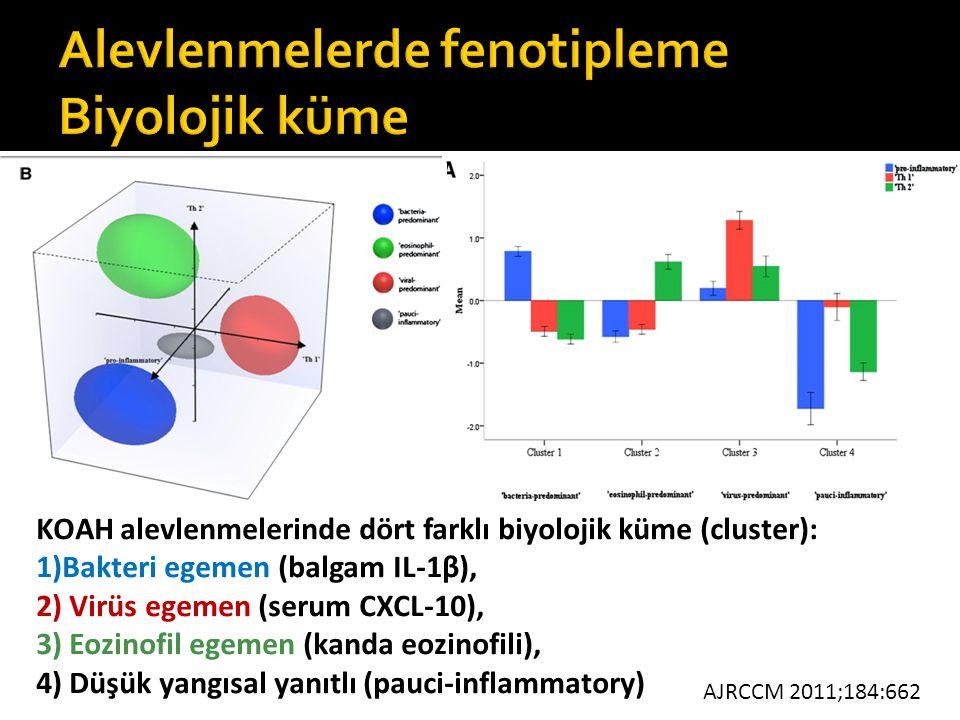 KOAH alevlenmelerinde dört farklı biyolojik küme (cluster): 1)Bakteri egemen (balgam IL-1β), 2) Virüs egemen (serum CXCL-10), 3) Eozinofil egemen (kan