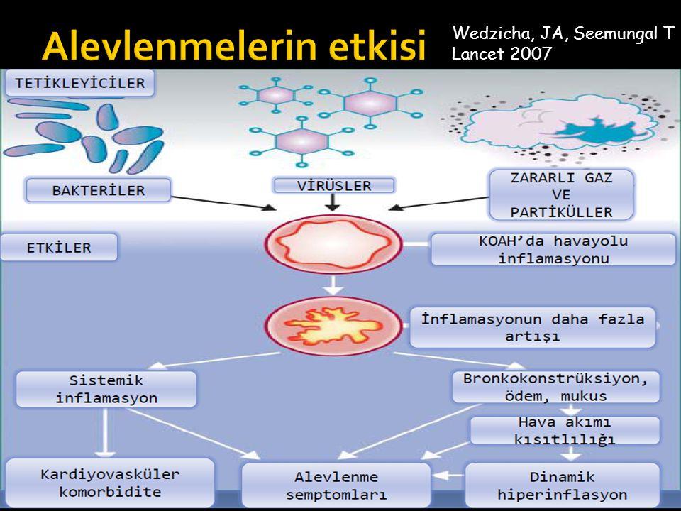 Risk (GOLD sınıflamasına göre hava akmında kısıtlılık) Risk (Alevlenme öyküsü) ≥ 2 ALEVLENME VEYA ≥1 HOSPİTALİZASYON > 2 1 0 (C) (A) 4 3 2 1 mMRC 0-1; CAT < 10 mMRC > 2; CAT > 10 Semptomlar Spirometriye göre gelecekteki risk durumu Hastanın öyküsüne göre gelecekteki risk durumu (D)(D) (B)(B)
