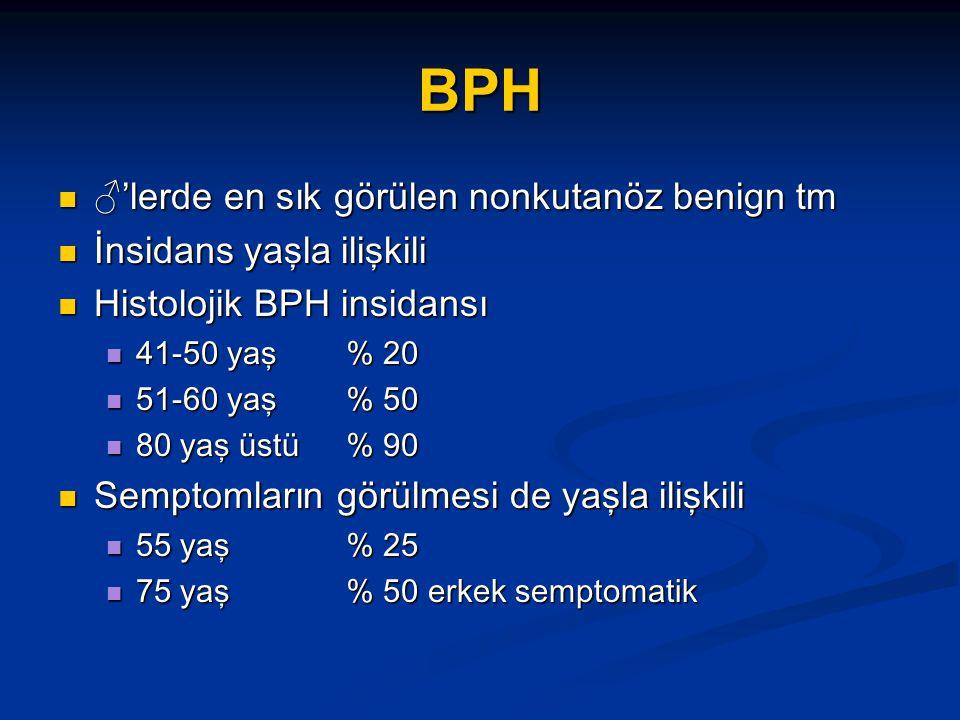 BPH ♂'lerde en sık görülen nonkutanöz benign tm ♂'lerde en sık görülen nonkutanöz benign tm İnsidans yaşla ilişkili İnsidans yaşla ilişkili Histolojik