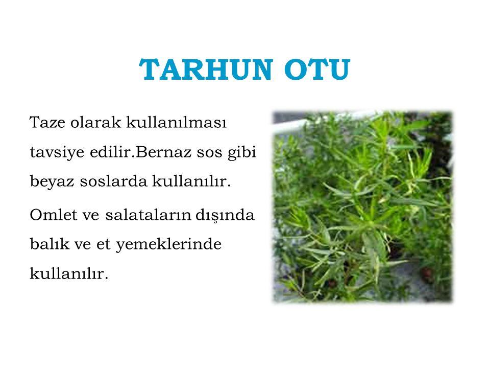 TARHUN OTU Taze olarak kullanılması tavsiye edilir.Bernaz sos gibi beyaz soslarda kullanılır. Omlet ve salataların dışında balık ve et yemeklerinde ku