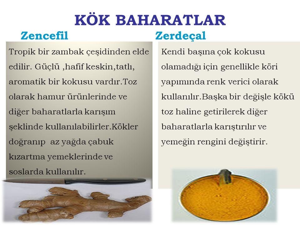 KÖK BAHARATLAR Zencefil Tropik bir zambak çeşidinden elde edilir. Güçlü,hafif keskin,tatlı, aromatik bir kokusu vardır.Toz olarak hamur ürünlerinde ve