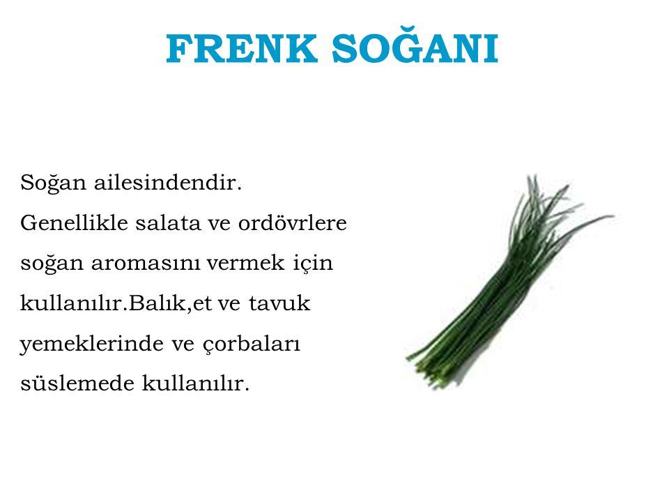 FRENK SOĞANI Soğan ailesindendir. Genellikle salata ve ordövrlere soğan aromasını vermek için kullanılır.Balık,et ve tavuk yemeklerinde ve çorbaları s