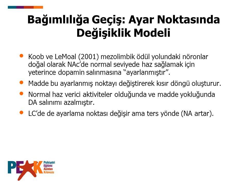 Bağımlılığa Geçiş: Ayar Noktasında Değişiklik Modeli Koob ve LeMoal (2001) mezolimbik ödül yolundaki nöronlar doğal olarak NAc'de normal seviyede haz