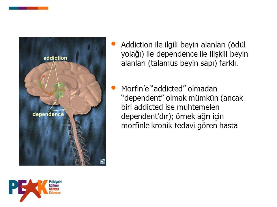 """Addiction ile ilgili beyin alanları (ödül yolağı) ile dependence ile ilişkili beyin alanları (talamus beyin sapı) farklı. Morfin'e """"addicted"""" olmadan"""