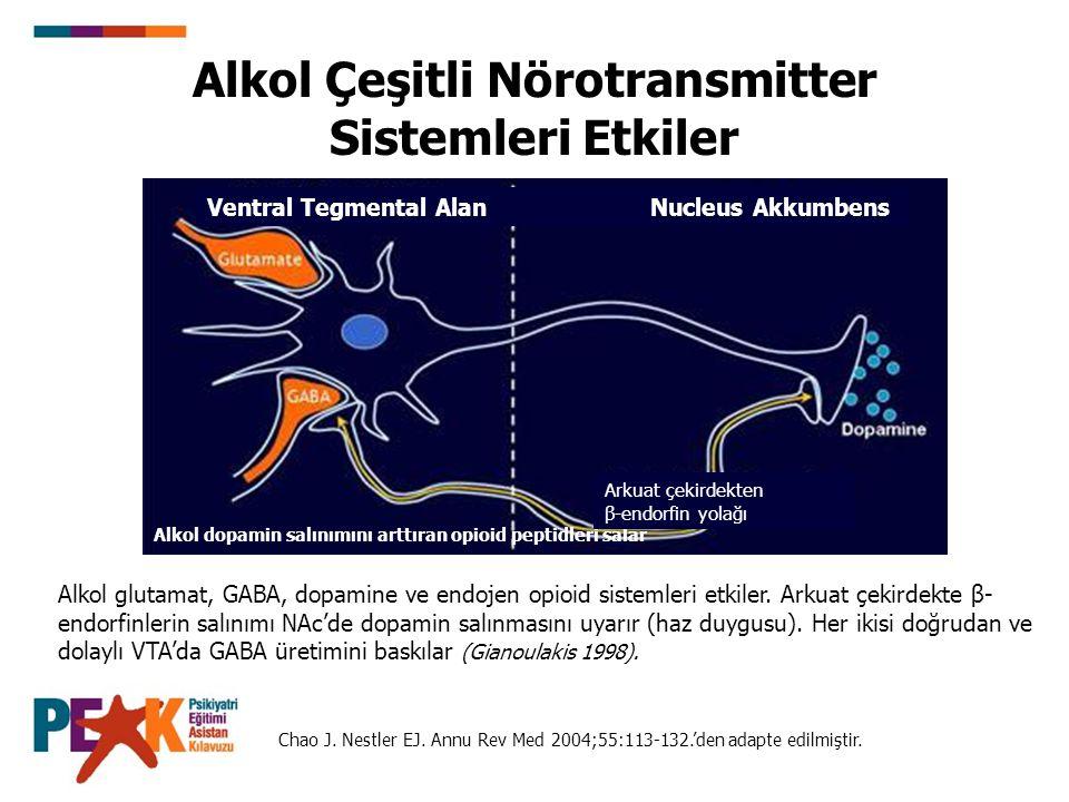 Alkol Çeşitli Nörotransmitter Sistemleri Etkiler Alkol glutamat, GABA, dopamine ve endojen opioid sistemleri etkiler. Arkuat çekirdekte β- endorfinler