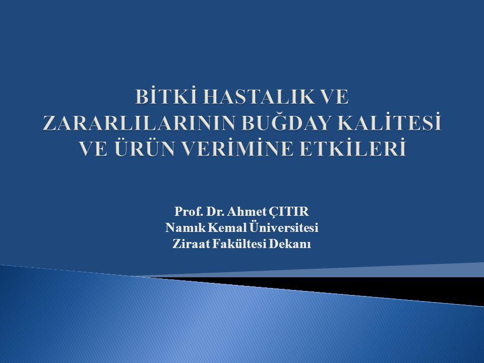  İnsanlar, Türkiye'de yaşam alanı bulmuştur. Türkiye uygarlıkların beşiğidir.
