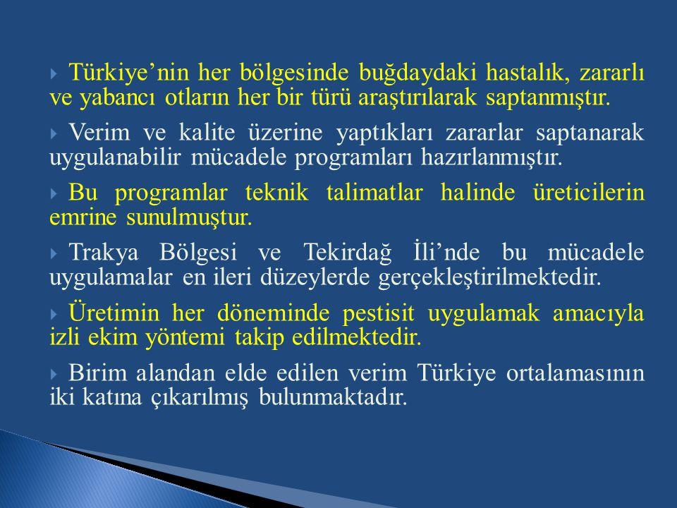  Türkiye'nin her bölgesinde buğdaydaki hastalık, zararlı ve yabancı otların her bir türü araştırılarak saptanmıştır.  Verim ve kalite üzerine yaptık