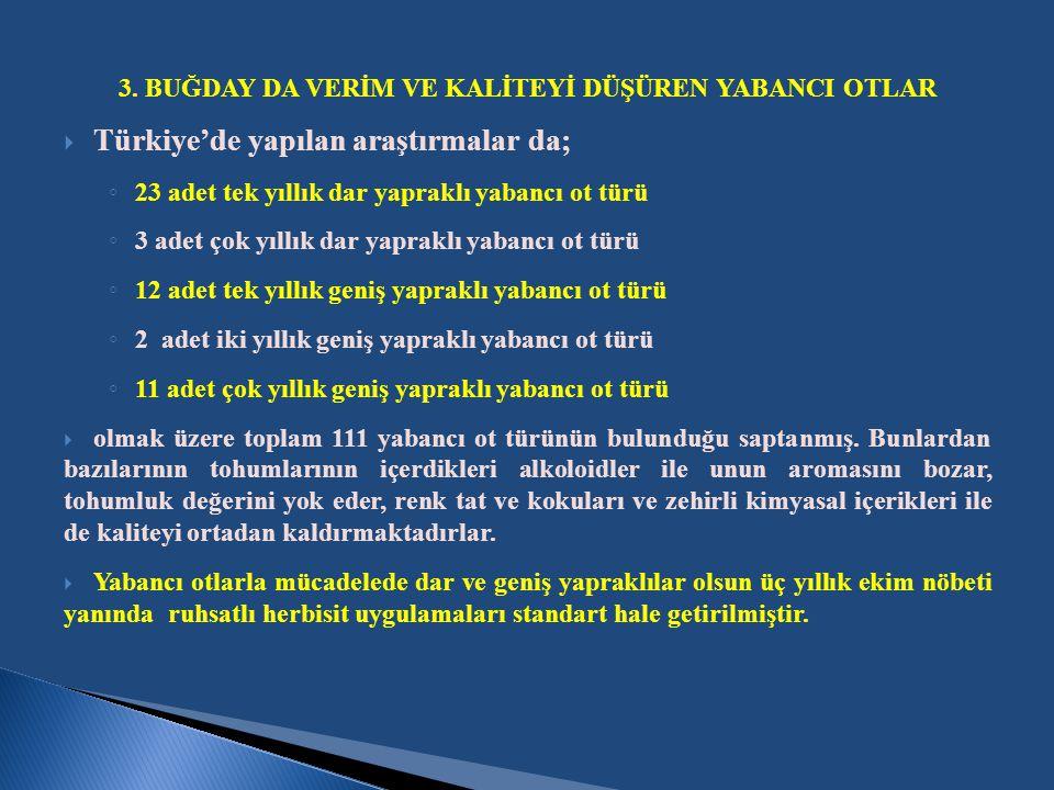 3. BUĞDAY DA VERİM VE KALİTEYİ DÜŞÜREN YABANCI OTLAR  Türkiye'de yapılan araştırmalar da; ◦ 23 adet tek yıllık dar yapraklı yabancı ot türü ◦ 3 adet