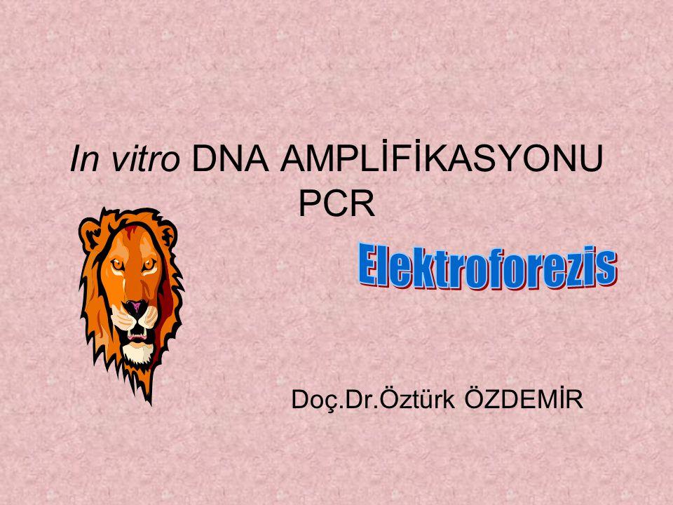 In vitro DNA AMPLİFİKASYONU PCR Doç.Dr.Öztürk ÖZDEMİR
