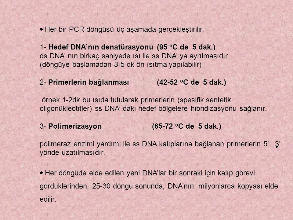 Her bir PCR döngüsü üç aşamada gerçekleştirilir. 1- Hedef DNA'nın denatürasyonu(95 o C de 5 dak.) ds DNA' nın birkaç saniyede ısı ile ss DNA' ya ay