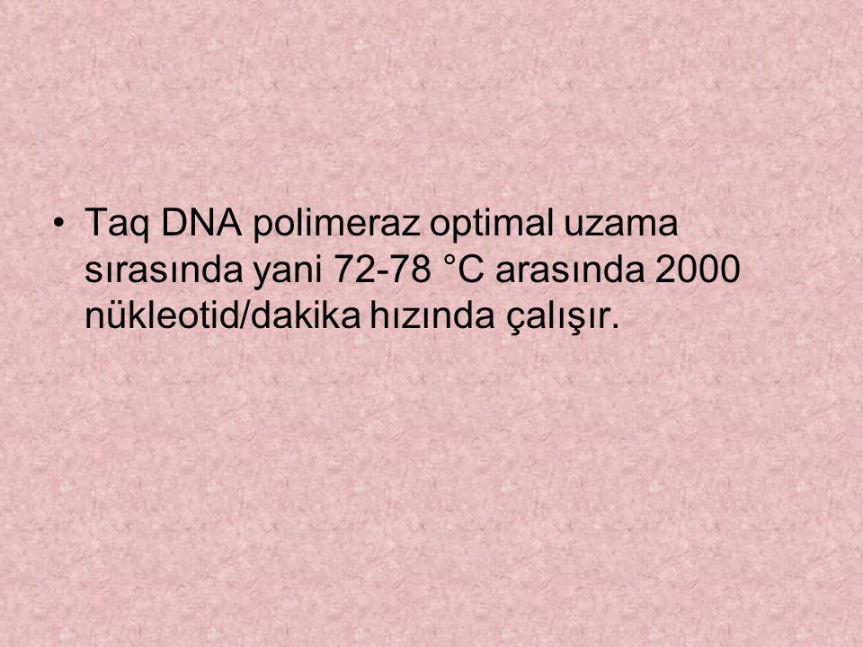 Taq DNA polimeraz optimal uzama sırasında yani 72-78 °C arasında 2000 nükleotid/dakika hızında çalışır.
