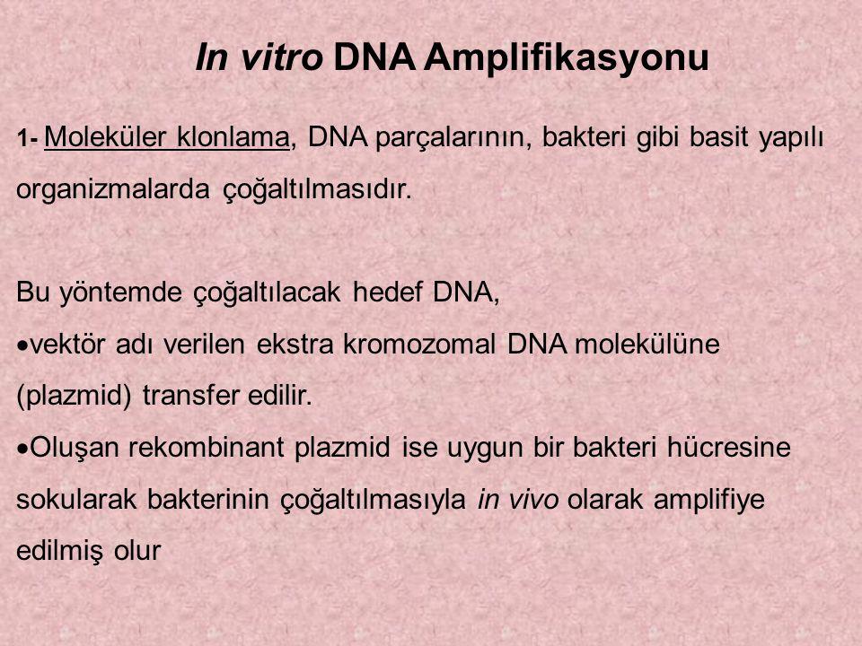In vitro DNA Amplifikasyonu 1- Moleküler klonlama, DNA parçalarının, bakteri gibi basit yapılı organizmalarda çoğaltılmasıdır. Bu yöntemde çoğaltılaca