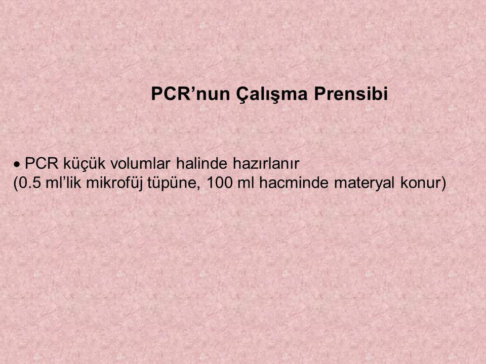 PCR'nun Çalışma Prensibi  PCR küçük volumlar halinde hazırlanır (0.5 ml'lik mikrofüj tüpüne, 100 ml hacminde materyal konur)